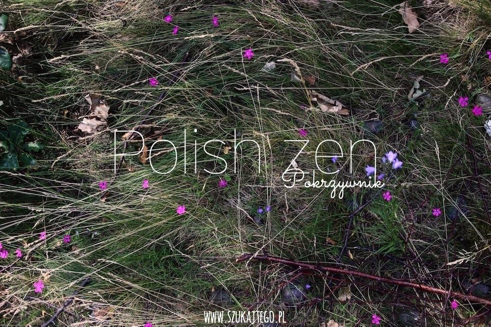 polish zen